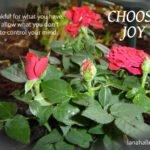 choose joy be thankful